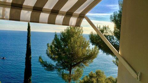 Store banne Toulon et environs